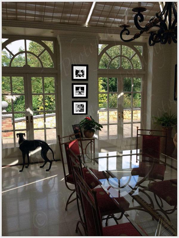 6-home-design-frame-wall-display